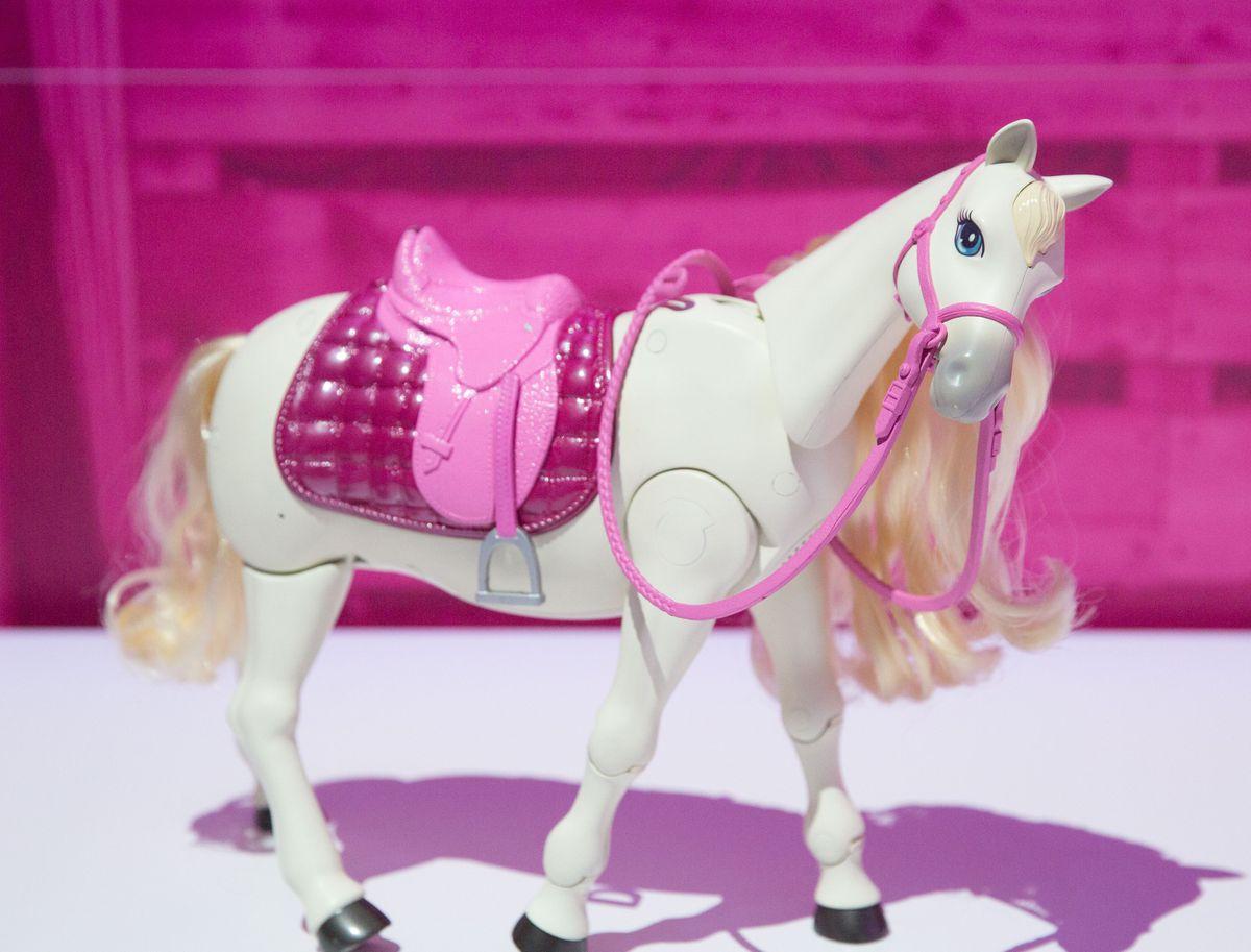 Hello Dream Horse has attitude.