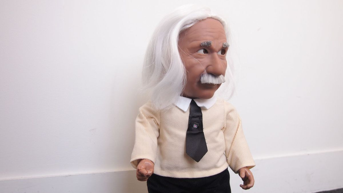 Good outfit, Einstein.
