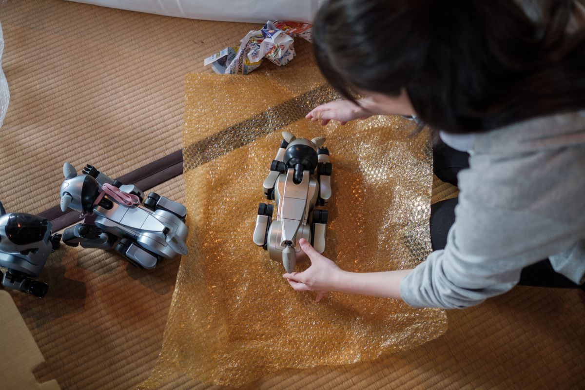 A girl wraps an AIBO after the robots' funeral at the Kofukuji temple.