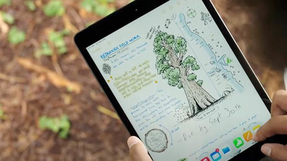Cut back on e-waste with a refurbished iPad.